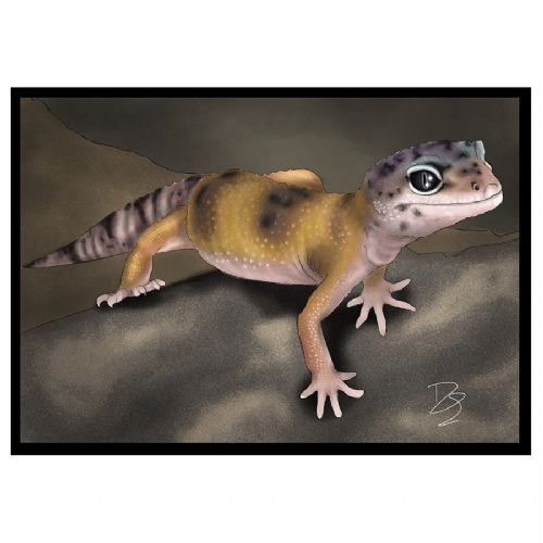 CC Greetings Card Leopard Gecko